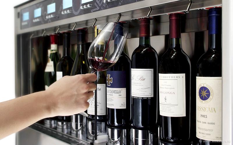 импортёры вина